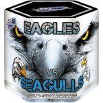 Eagles vs Seagulls
