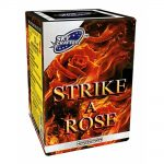 Strike a Rose SOLD OUT