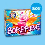 Surprise  (Gender Reveal Boy)